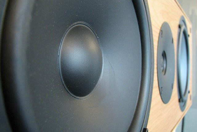Loud speakers can cause hearing loss